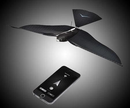 Bionic Bird