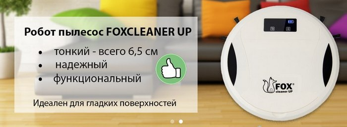 Foxcleaner Up