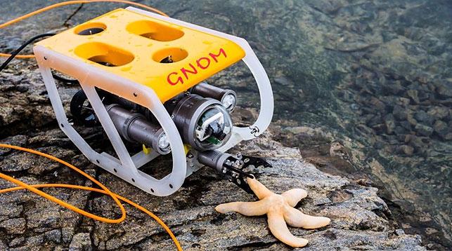 Гном подводный аппарат цена
