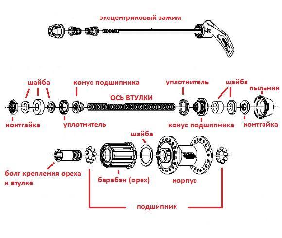 Как устроена задняя втулка скоростного велосипеда?